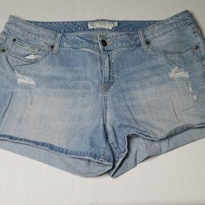 Torrid Distressed Short Shorts